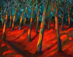 Wald beim Fransozenschlucht